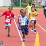 Skyport Magic Mile Bermuda, February 23 2019-9399