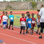 Skyport Magic Mile Bermuda, February 23 2019-9431
