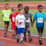 Skyport Magic Mile Bermuda, February 23 2019-9433