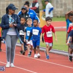 Skyport Magic Mile Bermuda, February 23 2019-9434
