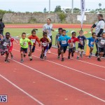 Skyport Magic Mile Bermuda, February 23 2019-9444