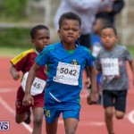 Skyport Magic Mile Bermuda, February 23 2019-9454
