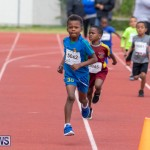 Skyport Magic Mile Bermuda, February 23 2019-9456