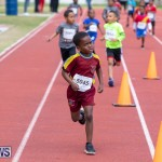 Skyport Magic Mile Bermuda, February 23 2019-9460
