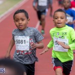 Skyport Magic Mile Bermuda, February 23 2019-9466