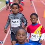 Skyport Magic Mile Bermuda, February 23 2019-9471
