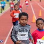 Skyport Magic Mile Bermuda, February 23 2019-9472