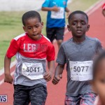 Skyport Magic Mile Bermuda, February 23 2019-9474