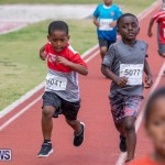 Skyport Magic Mile Bermuda, February 23 2019-9475