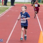 Skyport Magic Mile Bermuda, February 23 2019-9479