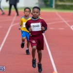Skyport Magic Mile Bermuda, February 23 2019-9482