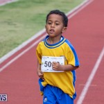 Skyport Magic Mile Bermuda, February 23 2019-9484