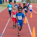 Skyport Magic Mile Bermuda, February 23 2019-9485