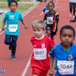 Skyport Magic Mile Bermuda, February 23 2019-9487