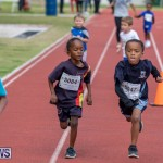Skyport Magic Mile Bermuda, February 23 2019-9489