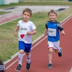 Skyport Magic Mile Bermuda, February 23 2019-9492