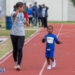 Skyport Magic Mile Bermuda, February 23 2019-9493