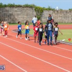 Skyport Magic Mile Bermuda, February 23 2019-9550