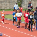 Skyport Magic Mile Bermuda, February 23 2019-9552