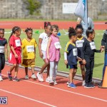 Skyport Magic Mile Bermuda, February 23 2019-9559