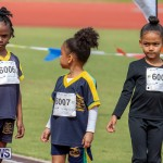 Skyport Magic Mile Bermuda, February 23 2019-9562