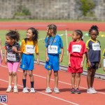 Skyport Magic Mile Bermuda, February 23 2019-9567