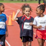 Skyport Magic Mile Bermuda, February 23 2019-9589