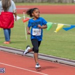 Skyport Magic Mile Bermuda, February 23 2019-9621