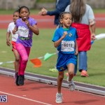 Skyport Magic Mile Bermuda, February 23 2019-9623