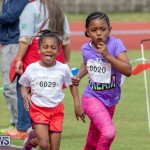 Skyport Magic Mile Bermuda, February 23 2019-9626