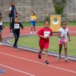 Skyport Magic Mile Bermuda, February 23 2019-9627