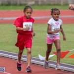 Skyport Magic Mile Bermuda, February 23 2019-9629