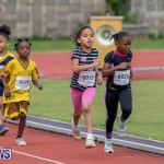 Skyport Magic Mile Bermuda, February 23 2019-9637