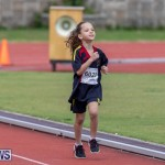 Skyport Magic Mile Bermuda, February 23 2019-9652