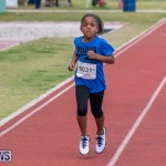 Skyport Magic Mile Bermuda, February 23 2019-9667