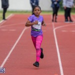 Skyport Magic Mile Bermuda, February 23 2019-9668