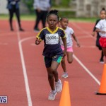 Skyport Magic Mile Bermuda, February 23 2019-9675