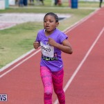 Skyport Magic Mile Bermuda, February 23 2019-9677