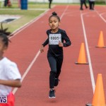 Skyport Magic Mile Bermuda, February 23 2019-9681
