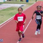 Skyport Magic Mile Bermuda, February 23 2019-9685