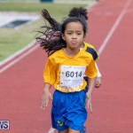 Skyport Magic Mile Bermuda, February 23 2019-9696