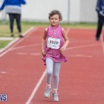Skyport Magic Mile Bermuda, February 23 2019-9701