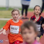 Skyport Magic Mile Bermuda, February 23 2019-9705