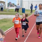Skyport Magic Mile Bermuda, February 23 2019-9709