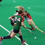 hockey Bermuda Feb 13 2019 (14)