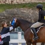 BHPA Bermuda Horse Pony Association Spring Show, March 24 2019-6091