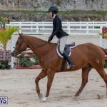 BHPA Bermuda Horse Pony Association Spring Show, March 24 2019-6106