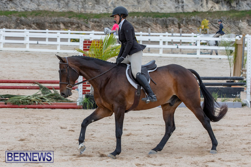 BHPA-Bermuda-Horse-Pony-Association-Spring-Show-March-24-2019-6111