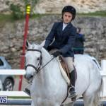 BHPA Bermuda Horse Pony Association Spring Show, March 24 2019-6131