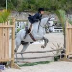 BHPA Bermuda Horse Pony Association Spring Show, March 24 2019-6135